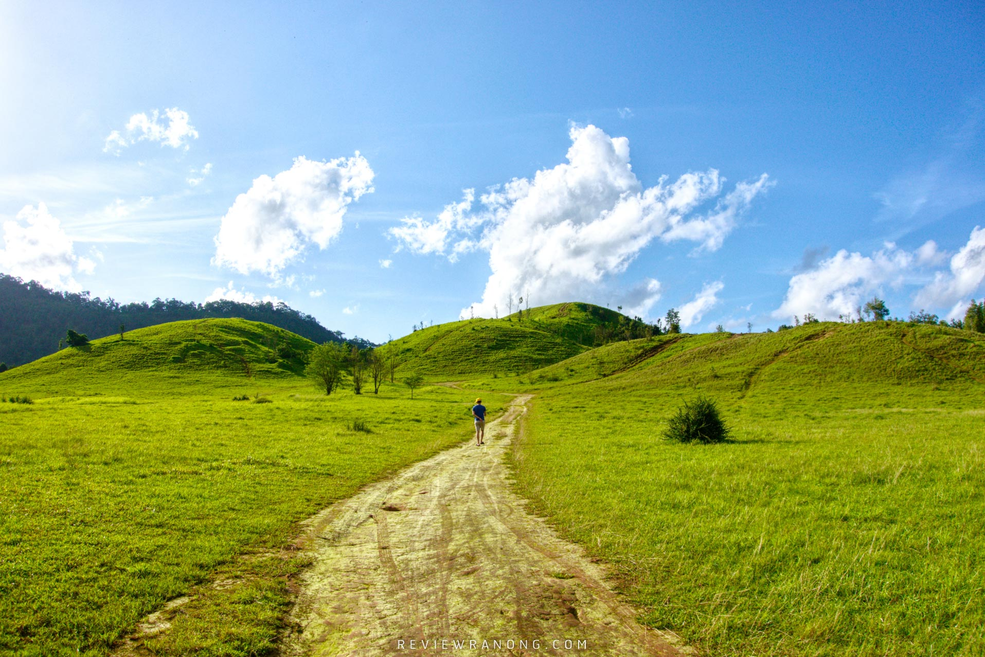 ที่เที่ยวระนอง,จุดเช็คอินระนอง,ภูเขาหญ้า